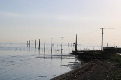 久津間海岸の海中電柱
